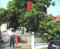 บ้านแฝดหลุดจำนอง ธ.ธนาคารอาคารสงเคราะห์ คู้ฝั่งเหนือ หนองจอก กรุงเทพมหานคร