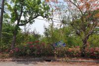 ที่ดินเปล่าหลุดจำนอง ธ.ธนาคารทหารไทยธนชาต ลำผักชี หนองจอก กรุงเทพมหานคร